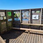 'Vogelscherm Reeuwijkse Surfplas snel vervangen'